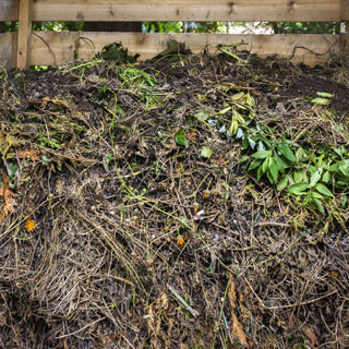Image of our green waste rubbish removal service